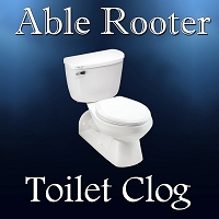 Toilet Clog - Drain Cleaning